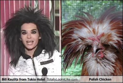 Bill Kaulitz from Tokio Hotel Totally Looks Like Polish Chicken
