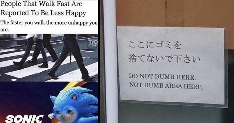 funny memes, random memes, meme dump, memes, funny, dank memes, relatable memes, tumblr, funny tweets, 2020 memes, coronavirus memes, funny signs, twitter, facebook, shitposts, florida man | People Walk Fast Are Reported Be Less Happy faster walk more unhappy are. SONIC | DO NOT DUMB HERE. NOT DUMB AREA HERE.
