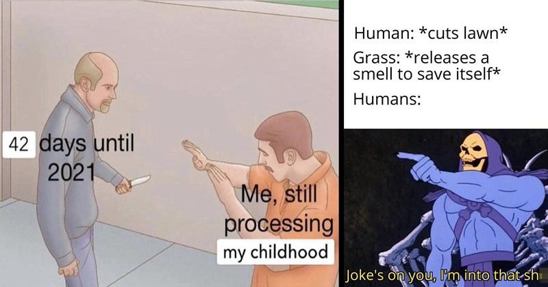 funny memes, relatable memes, normies, funny tweets, twitter, twitter memes, memes, shitposts, 2020 memes, depression memes, relationship memes, lol | 42 days until 2021 still processing my childhood illustration of a man with a knife threatening another man | Human cuts lawn Grass releases smell save itself Humans: Joke's on l'm into shit Skeletor