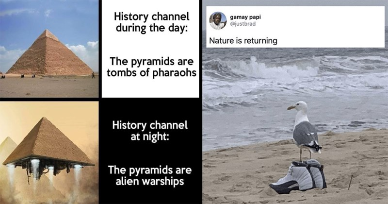 cosmos, dinosaurs, moon, existentialism, quarantine, 2020 memes, memes, funny memes, twitter memes, funny tweets, random memes, relatable memes, anxiety memes, dank memes, lol | History channel during day pyramids are tombs pharaohs History channel at night pyramids are alien warships | gamay papi @justbrad Nature is returning seagull wearing trainers