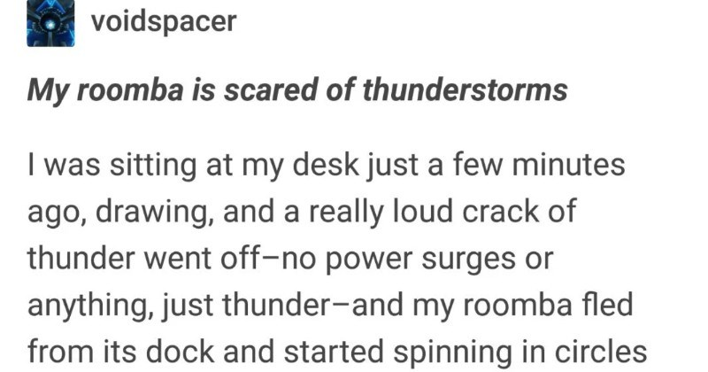 A funny Tumblr thread about how humans get attached to pretty much anything | possessed-radios E broccoli-butler voidspacer My roomba is scared thunderstorms sitting at my desk just few minutes ago, drawing, and really loud crack thunder went off-no power surges or anything, just thunder-and my roomba fled its dock and started spinning circles currently now have an active roomba sitting quietly on my lap