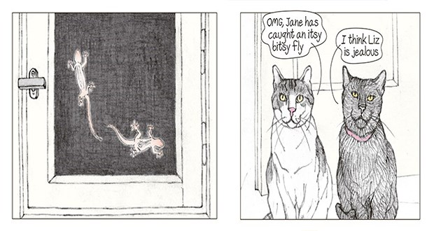 cats tune into their favorite show - watching lizards - thumbnail is the first two panels of the comic | OMG, Jane has caught an itsy bitsy fly think Liz is jealous