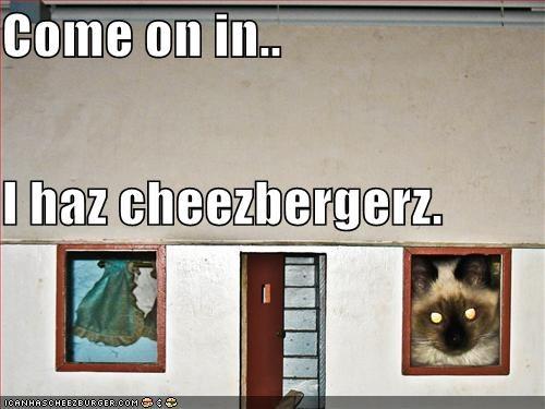 Cheezburger Image 1308546304