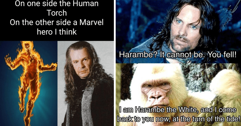 funny memes about the lord of the rings movies, viggo mortensen broken toe, lol, funny tweets | On one side Human Torch On other side Marvel hero think | Harambe cannot be fell am Harambe White, and come back now, at turn tide!