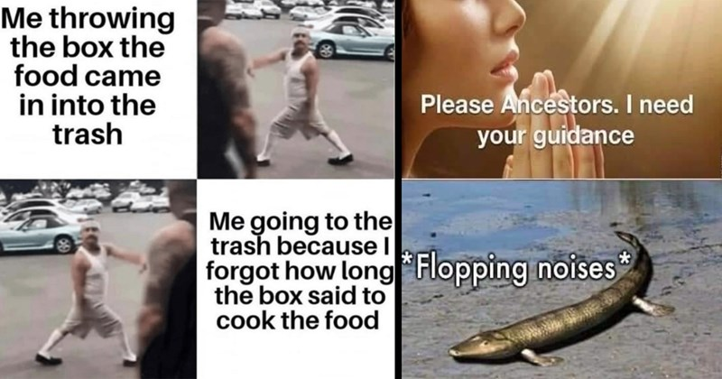 funny memes, random memes, funny tweets, twitter memes, dank memes, stupid memes, shitposts, meme dump, lol, weird, cat memes, covid-19, funny random memes, funny pics | throwing box food came into trash going trash because l forgot long box said cook food | Please Ancestors need guidance *Flopping noises*