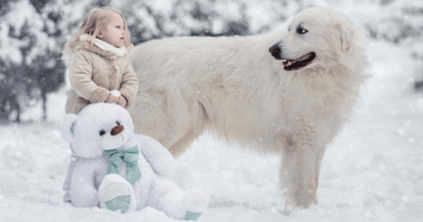 kids and dogs by russian photographer