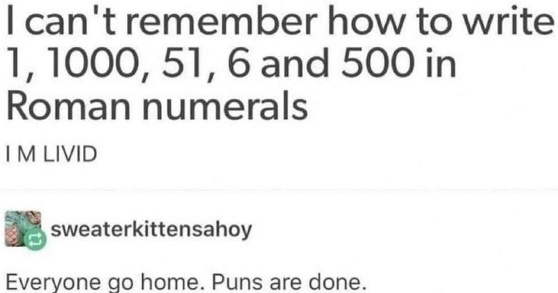 funny dad jokes | can't remember write 1, 1000, 51, 6 and 500 Roman numerals IM LIVID sweaterkittensahoy Everyone go home. Puns are done.