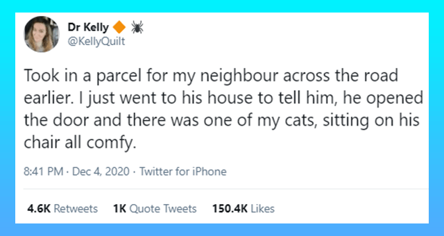 viral tweets of people sharing stories of finding their cats in random weird places thumbnail includes one tweet 'Text - Dr Kelly @KellyQuilt Took in a parcel for my neighbour across the road earlier. I just went to his house to tell him, he opened the door and there was one of my cats, sitting on his chair all comfy. 8:41 PM · Dec 4, 2020 · Twitter for iPhone 4.6K Retweets 1K Quote Tweets 150.5K Likes'