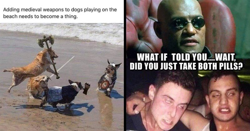 random memes, funny memes, dank memes, stupid memes, nerdy memes, relatable memes, lol, funny, memes, lotr memes, star wars memes, gaming memes, the matrix, dnd, twitter memes, funny tweets | Adding medieval weapons dogs playing on beach needs become thing. Brittney Mobley LitRPG Forum 15 hrs Dog larping lol | IF TOLD .WAIT, DID JUST TAKE BOTH PILLS Morpheus The Matrix