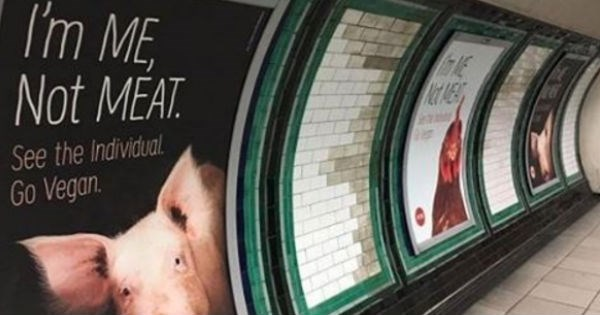 ads animals London peta tube Subway vegan - 1317381