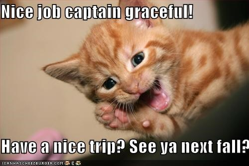 Nice job captain graceful! Have a nice trip? See ya next fall? -  Cheezburger - Funny Memes | Funny Pictures