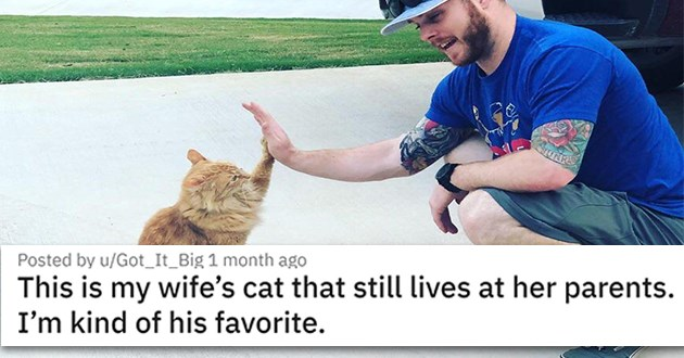 "adorable bond between animals and humans - thumbnail of ""this is my wifes cat that still lives at her parents. Im kind of his favorite."""