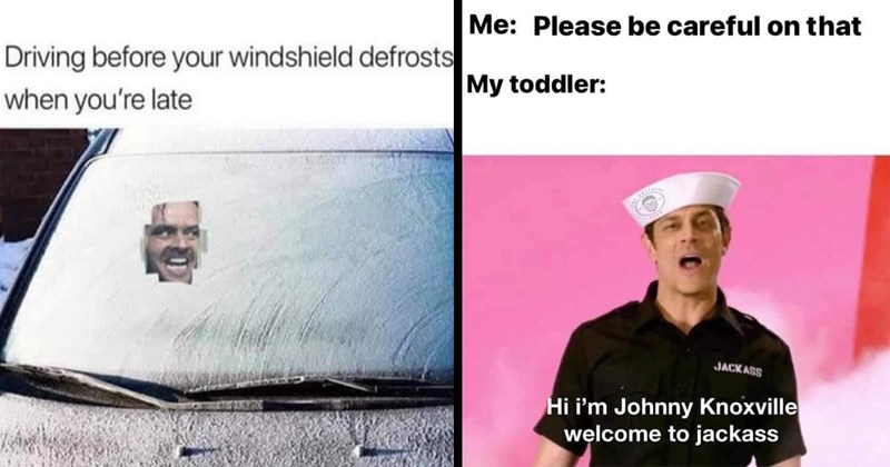 funny memes, random memes, memes, lol, funny, shitposts, funny tweets, twitter memes, dank memes, stupid memes, animal memes, cats, christmas memes, funny pics, 2020 memes, relatable memes, star wars memes | Driving before windshield defrosts late The Shining Here's Johnny face | Please be careful on My toddler: JACK ASS Hi Johnny Knoxville welcome jackass