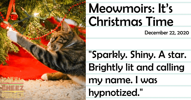 "the 12th entry of meowmoirs diary of a cat about a cat's first Christmas thumbnail includes a pictures of a cat playing with a Christmas tree as well as the name of the entry and a quote from it 'Organism - Meowmoirs: It's Christmas Time December 22, 2020 ""Sparkly. Shiny. A star. Brightly lit and calling my name. I was hypnotized."" HEEZ BURGER'"