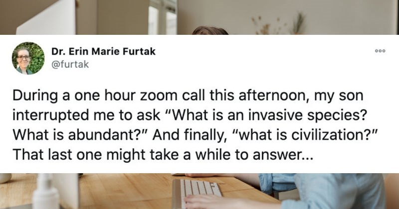 Parents describe their funniest Zoom call interruptions by their kids. | Dr. Erin Marie Furtak 000 @furtak During one hour zoom call this afternoon, my son interrupted ask is an invasive species is abundant And finally is civilization last one might take while answer