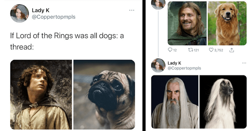Twitter thread in which characters from lord of the rings are recast as dogs | Save Lady K @Coppertopmpls If Lord of the Rings was all dogs: a thread: Frodo as a pug Boromir as a Labrador Saruman as an Afghan Hound