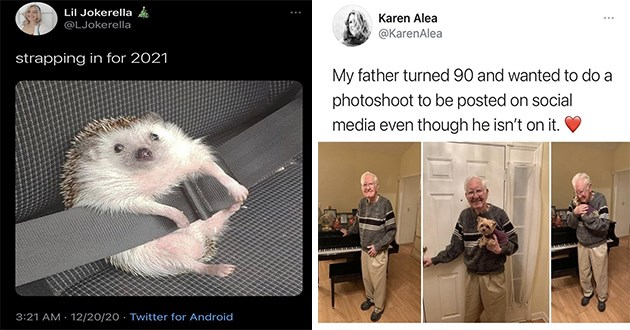 "adorable and hilarious animal pics and memes - thumbnail includes two animal tweets - one of a hedgehog with a seatbelt on ""strapping in for 2021"" and one of an old man holding a dog ""my father turned 90 and wanted to do a photoshoot to be posted on social media even thought he isn't on it"""