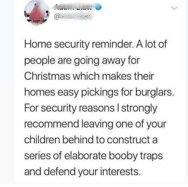funny life hacks, internet memes, wtf memes | Ball - Home security reminder lot people are going away Christmas which makes their homes easy pickings burglars security reasons strongly recommend leaving one children behind construct series elaborate booby traps and defend interests.