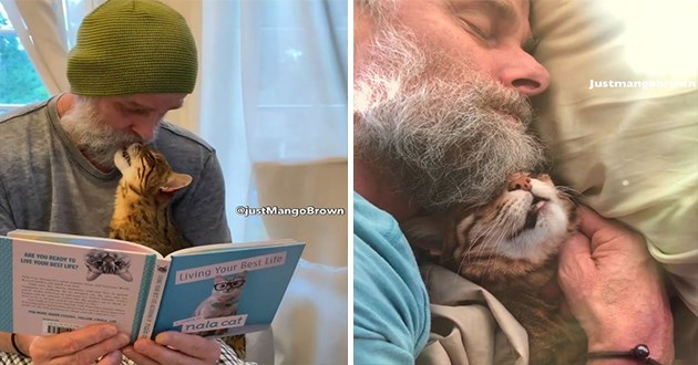 "adorable and loving bengal cat named mango brown and his equally loving human - thumbnail of mango brown and his human cuddling in their sleep and reading a book titled ""living your best life"""
