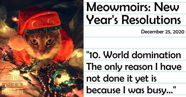 "the thirteenth entry of meowmoirs diary of a cat thumbnail includes a picture of a cat wearing a santa hat surrounded by lights the title of the entry and a quote from it 'Text - Meowmoirs: New Year's Resolutions December 25, 2020 ""10. World domination The only reason I have not done it yet is because I was busy..."" HA CHEEZ BUBIGER'"