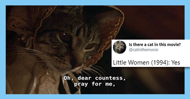 "twitter account which reveals which a cat is featured in a film or not - thumbnail of tweet ""little women: yes"" 