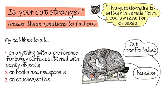 "an 'is your cat strange questionnaire - thumbnail of title ""is your cat strange?"" following by multiple choice answers 