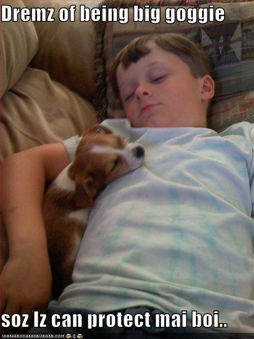 big boy dreams human puppy whatbreed - 1328741632