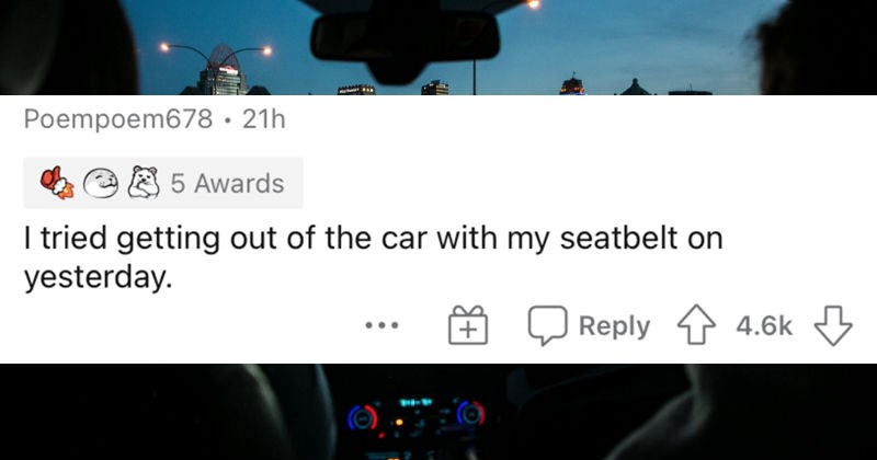 A collection of times that people humbled themselves by lacking intelligence. | Poempoem678 tried getting out car with my seatbelt on yesterday.