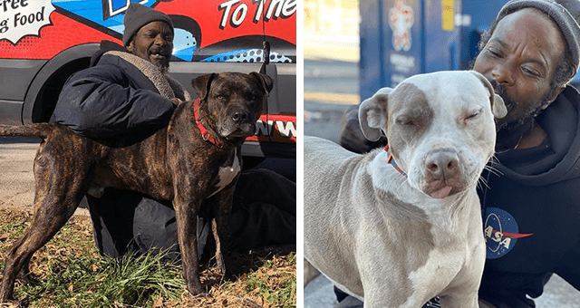 story about a homeless man running into a burning animal shelter and rescuing all of the animals inside it thumbnail includes two pictures of a black homeless man with two rescued dogs