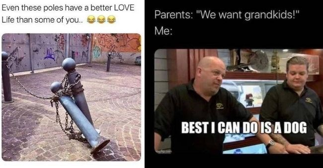 "memes about being single | thumbnail includes two memes picture of poles - Even these poles have a better LOVE Life than some of you.. Text - Parents: ""We want grandkids!"" Me: BEST I CAN DO ISA DOG gp.com"