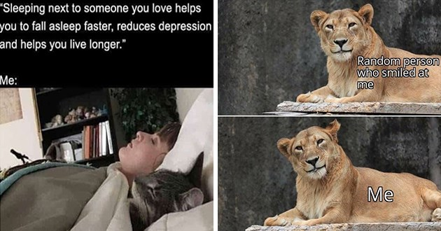 2020 years best and cutest wholesome animal memes - thumbnail of woman sleeping beside a cat and a lioness smiling at the camera | Sleeping next someone love helps fall asleep faster, reduces depression and helps live longer | Random person who smiled at