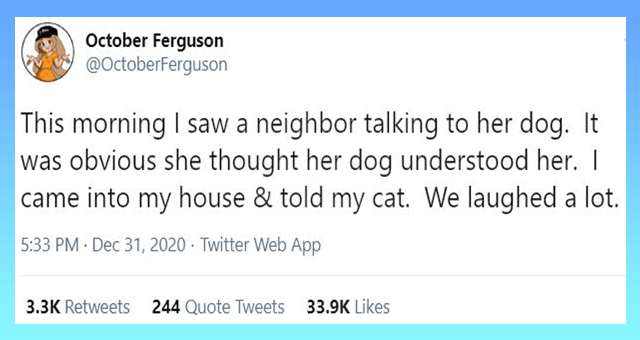 funny tweets of people speaking to their pets thumbnail includes one tweet 'Text - October Ferguson @OctoberFerguson This morning I saw a neighbor talking to her dog. It was obvious she thought her dog understood her. I came into my house & told my cat. We laughed a lot. 5:33 PM · Dec 31, 2020 · Twitter Web App 3.3K Retweets 244 Quote Tweets 33.9K Likes'