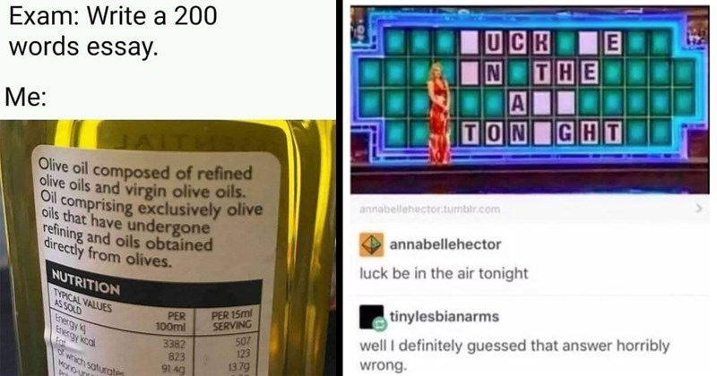 funny memes, memes, random memes, dank memes, shitposts, funny tweets, funny pics, twitter memes, lol, funny, tumblr memes | Exam: Write 200 words essay Olive oil composed refined olive oils and virgin olive oils. Oil comprising exclusively olive oils have undergone refining and oils obtained directly olives. | UCK N TON GHT annabeilehector.tumblr.com annabellehector luck be air tonight tinylesbianarms well definitely guessed answer horribly wrong.