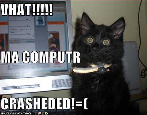 vhat ma computr crasheded cheezburger funny memes