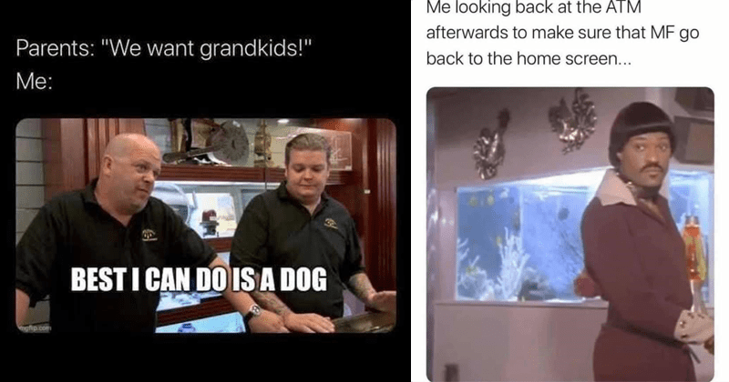 Funny random memes, dank memes, twisted tea, relatable memes | Parents want grandkids BEST CAN DO IS DOG | looking back at ATM afterwards make sure MF go back home screen