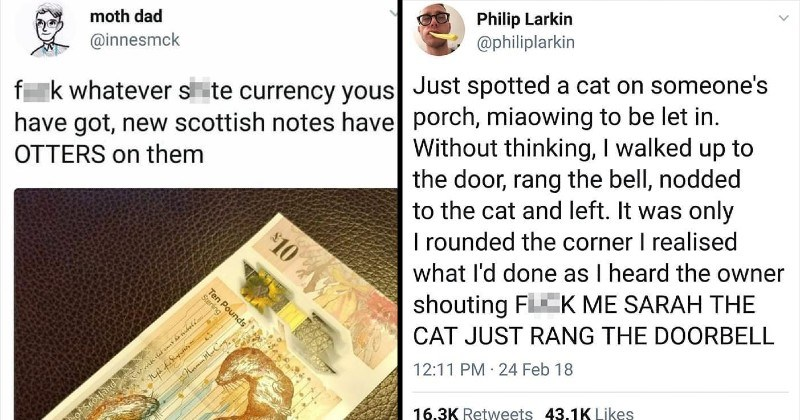 funny Scottish twitter tweets | moth dad @innesmck fuckk whatever shite currency yous have got, new scottish notes have OTTERS on them Ten Pounds Royal Bank Srotland 10 Stering | Philip Larkin @philiplarkin Just spotted cat on someone's porch, miaowing be let Without thinking walked up door, rang bell, nodded cat and left only rounded corner realised done as heard owner shouting F K SARAH CAT JUST RANG DOORBELL