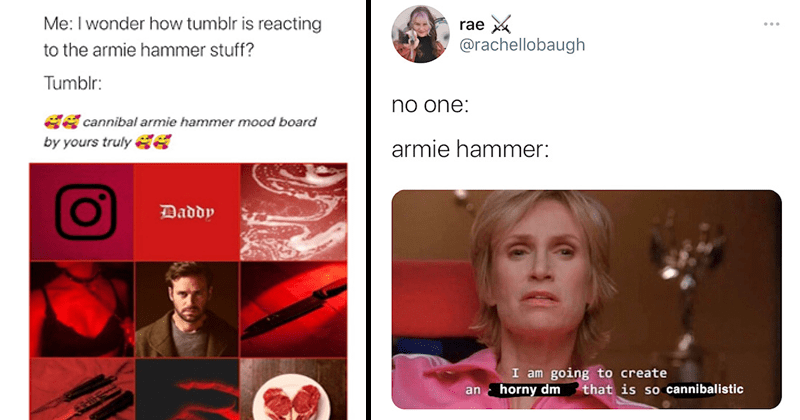 Twitter reacts to allegations of Armie Hammer's cannibalistic sexting, direct messages, twitter reactions, funny tweets | Me: I wonder how tumblr is reacting to the armie hammer stuff? Tumblr: cannibal armie hammer mood board by yours truly | rae @rachellobaugh no one: armie hammer: I am going to create a horny dm that is so cannibalistic