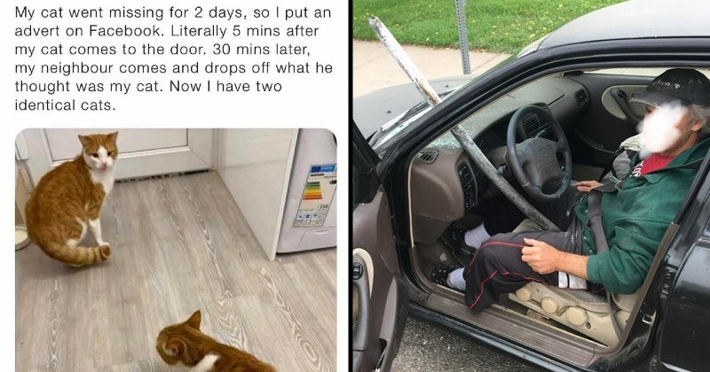 rare moments that go against the odds | My cat went missing 2 days, so put an advert on Facebook. Literally 5 mins after my cat comes door. 30 mins later, my neighbour comes and drops off he thought my cat. Now have two identical cats. | pole going through a car window and barely missing the driver