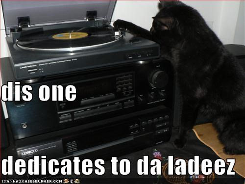 dedication dj ladeez lolcats Music record - 1338989312