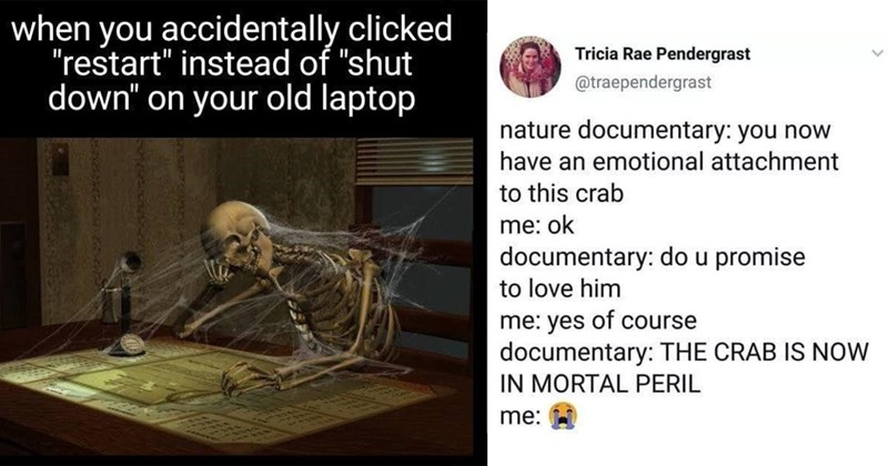 random memes, funny memes, meme dump, dank memes, stupid memes, relatable memes, memes, funny, twitter memes, funny tweets, tumblr memes   accidentally clicked restart instead shut down on old laptop skeleton sitting at a desk   Tricia Rae Pendergrast @traependergrast nature documentary now have an emotional attachment this crab ok documentary: do u promise love him yes course documentary CRAB IS NOW MORTAL PERIL :