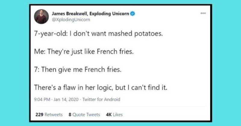 funny tweets showing kid logic no one can argue with | thumbnail Text - James Breakwell, Exploding Unicorn @XplodingUnicorn 000 7-year-old: I don't want mashed potatoes. Me: They're just like French fries. 7: Then give me French fries. There's a flaw in her logic, but I can't find it. 9:04 PM Jan 14, 2020 - Twitter for Android 229 Retweets 8 Quote Tweets 4K Likes