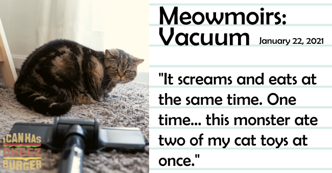 "the seventeenth entry of meowmoirs diary of a cat thumbnail includes a picture of a cat next to a vacuum cleaner the title of the entry and a quote from it 'Text - Meowmoirs: Vacuum January 22, 2021 ""It screams and eats at the same time. One time... this monster ate CANHAS two of my cat toys at BURGER once.""'"