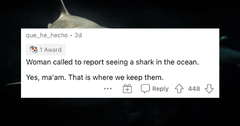 A collection of the funniest 911 calls that operators have ever received. | que_he_hecho Woman called report seeing shark ocean. Yes, ma'am is where keep them.