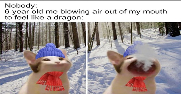 "weeks best and cutest wholesome animal memes - thumbnail of cat opening mouth in cold air/snow ""Nobody: 6 year old me blowing air out of my mouth to feel like a dragon:"""