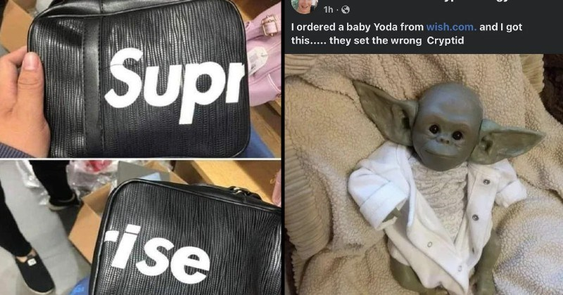 funny knockoff bootleg products | Supreme bag that actually spells the word Surprise | ordered baby Yoda wish.com. and got this they set wrong Cryptid