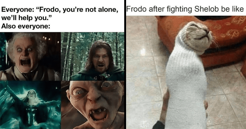 Tolkien tuesday lord of the rings memes dank memes | Everyone Frodo not alone help Also everyone: scary Bilbo, queen Galadriel, Gollum | Frodo after fighting Shelob be like cat trapped in a sock