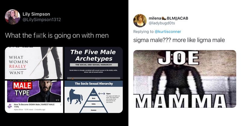 trending tweets, twitter memes, funny tweets, twitter, funny memes, memes, sigma male, alpha male, wtf, roast, cringe | Lily Simpson @LilySimpson1312 What the fuck is going on with men | milena BLMllACAB @ladybugdOts Replying to @kurtisconner sigma male??? more like ligma male