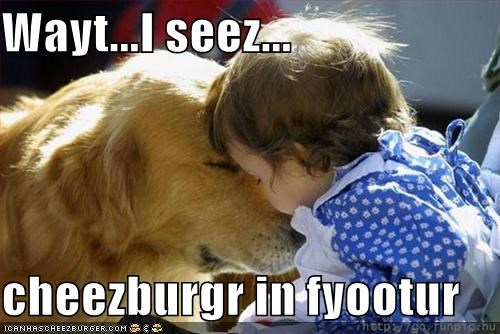 Cheezburger Image 1350434048
