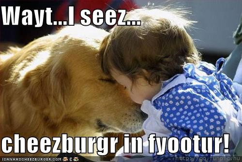 Cheezburger Image 1350437632