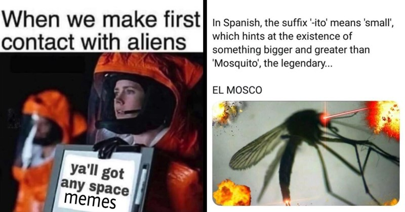 random memes, funny memes, stupid memes, dumb memes, funny tweets, dank memes, shitposts, lol, funny, relatable memes | make first contact with aliens ya'll got any space memes | Spanish suffix ito means small which hints at existence something bigger and greater than Mosquito legendary EL MOSCO
